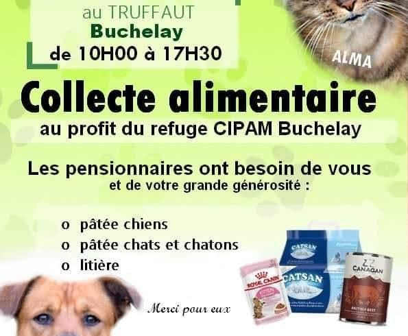 Collecte samedi 21 février 2021, TRUFFAUT, Buchelay