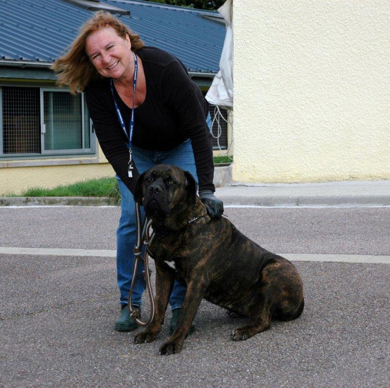 Audeyssa cane corso – 15 sept 2013
