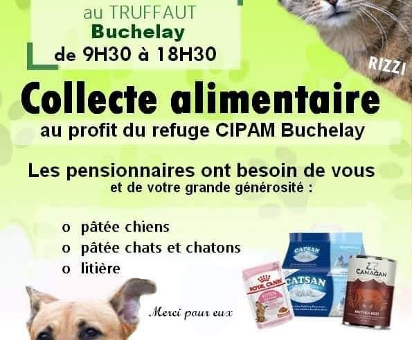 COLLECTE chez TRUFFAUT, Buchelay